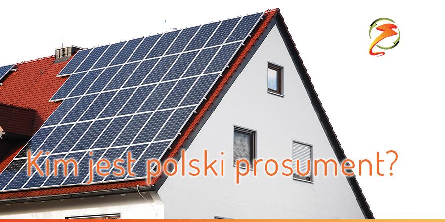 KIM JEST POLSKI PROSUMENT